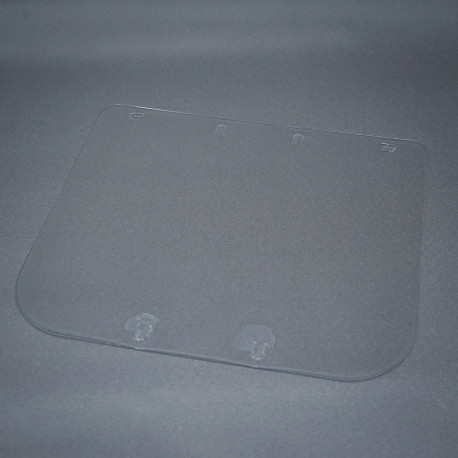 Protective screen for face protector